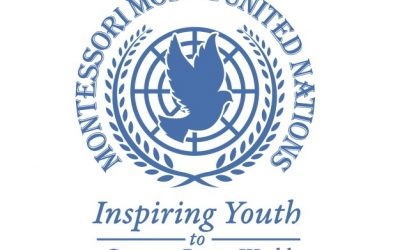 Give Nation at the 2019 Rome Conference – Montessori Model United Nations